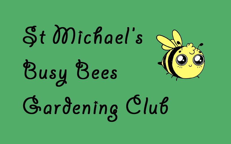 st-michaels-busy-bees-gardening-club-1a